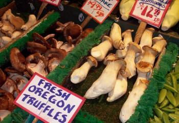 mushrooms-81806_1280