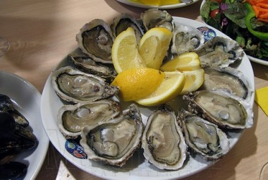 2-oysters_wmark