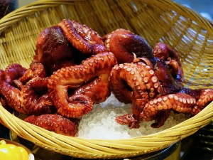 octopus-489868_1280