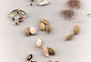 574px-Cardamom-Dried-Seeds01