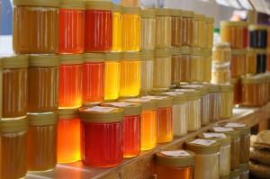 honey-318175_1280