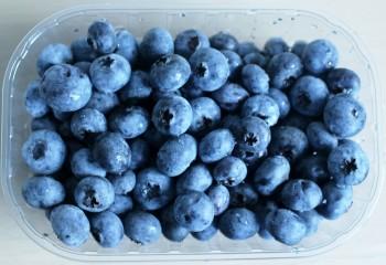 blueberries-435610_1280