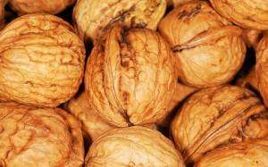 walnut-101462_1280