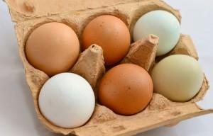 egg-653303_1280