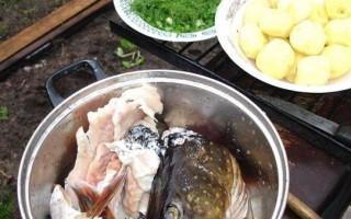 рыба по-казахски