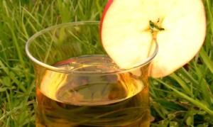 noindex_apple-cider2