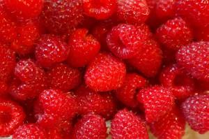 raspberries-227976_1280