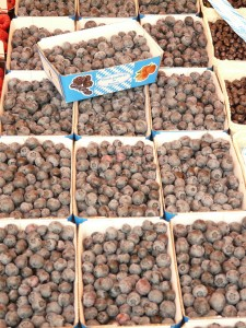 sloes-59077_1280