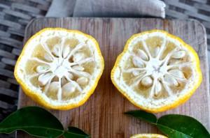 Yuzu-Japanese-Lemon-3-550x364