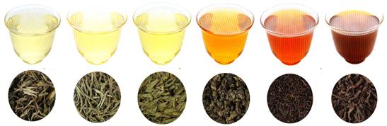 tea-line2