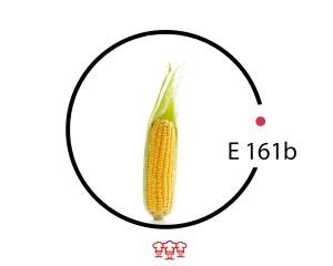 e 161b