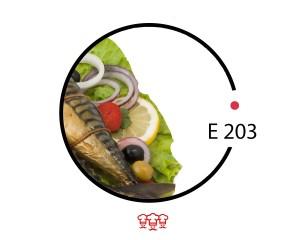 e 203
