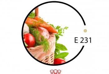 e 231