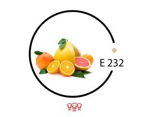 e 232