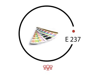 e 238