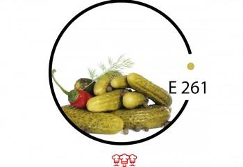 e 261
