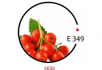 e 349