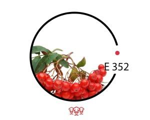 e 352