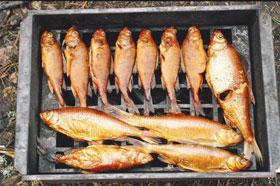 koptilnia-dlja-ryby
