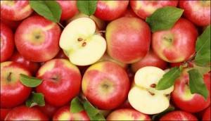 apple-blr