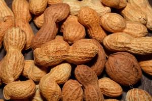 peanuts-618551_1280