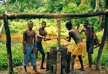 3329171--vyroba-palmoveho-oleje-v-kongu-ilustracni-foto--1-800x600p0