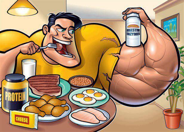 Sports_Nutrition_op_or_not_trenerpro24.ru1