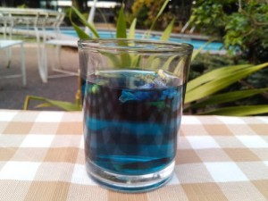 thai-blue-tea