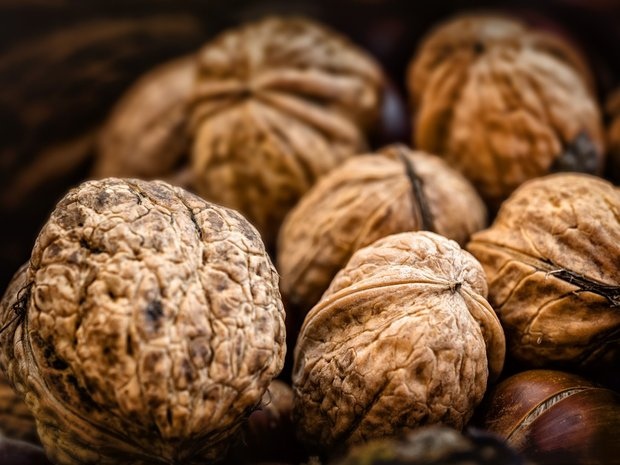 freshly-collected-walnuts_10216621-landscape-08_minimal