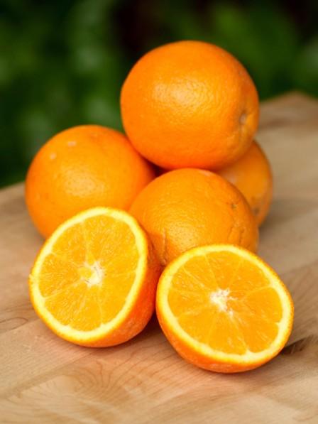 orangen-h_448x597