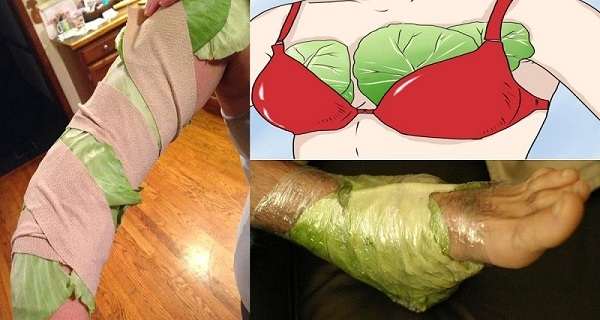 After-reading-this-You-will-surely-start-putting-cabbage-leaves-on-your-chest-and-legs