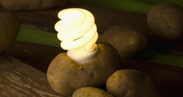 make-your-own-potato-lightbulb-01