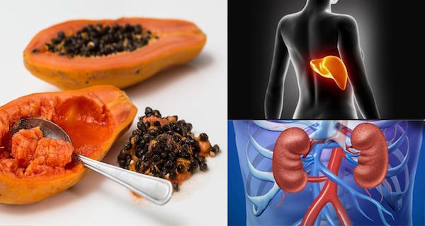 Start-Eating-Papaya-Seeds-Right-Now-–-There-Are-Magical-Cure-For-Gut-Liver-Kidney-Cancer-And…