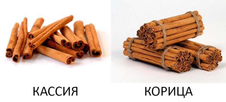 content_koritsa1_1