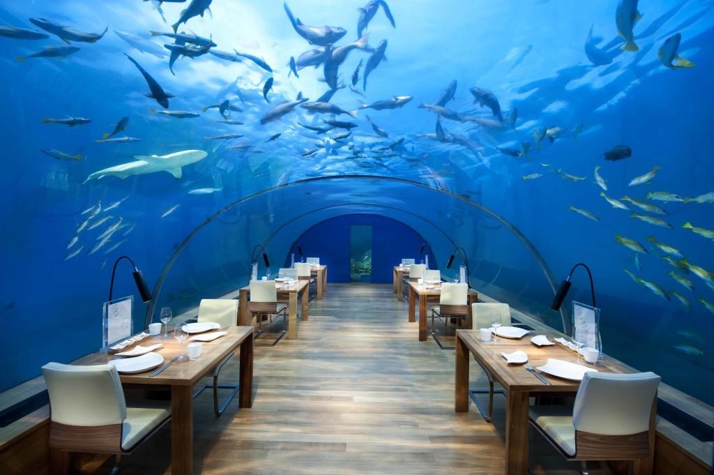 ithaa-undersea-restaurant-woe1-1024x681