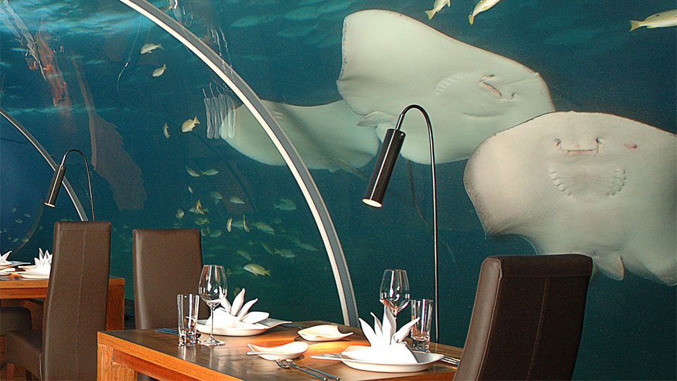 ithaa-undersea-restuarant-82